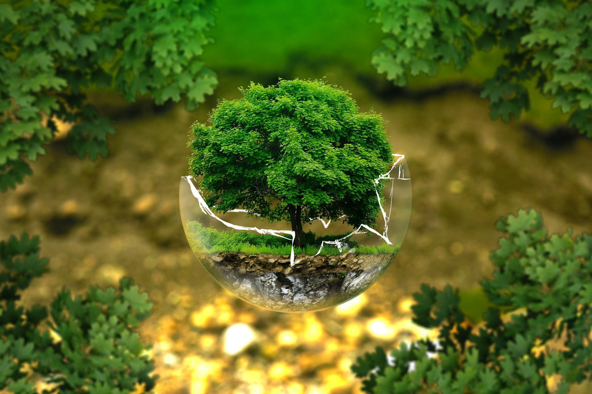 Le prêt développement durable de la Société Générale : tout ce qu'il faut savoir