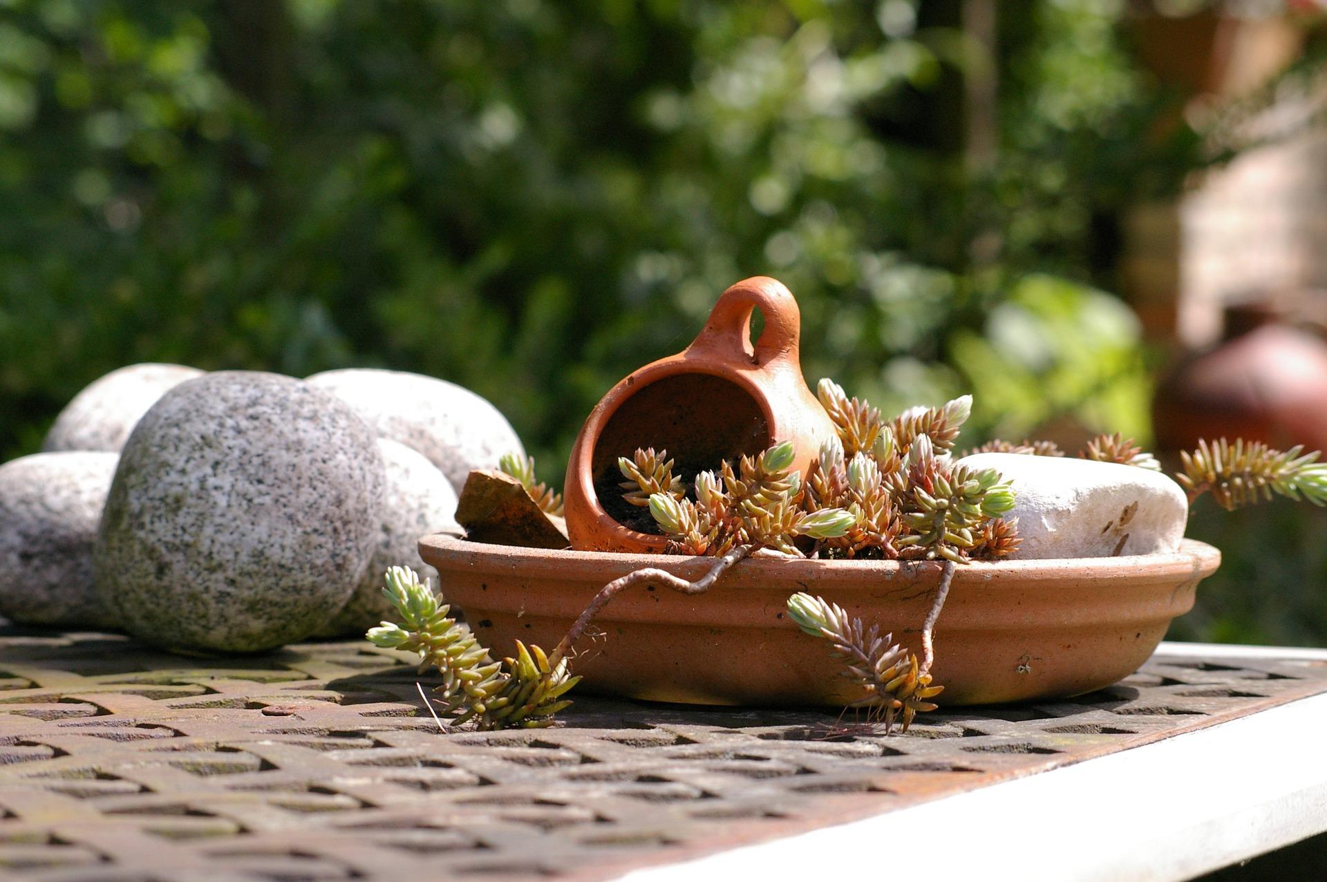 Gardenscapes - Les 10 Astuces Pour Remporter la Victoire à Tous les Niveaux