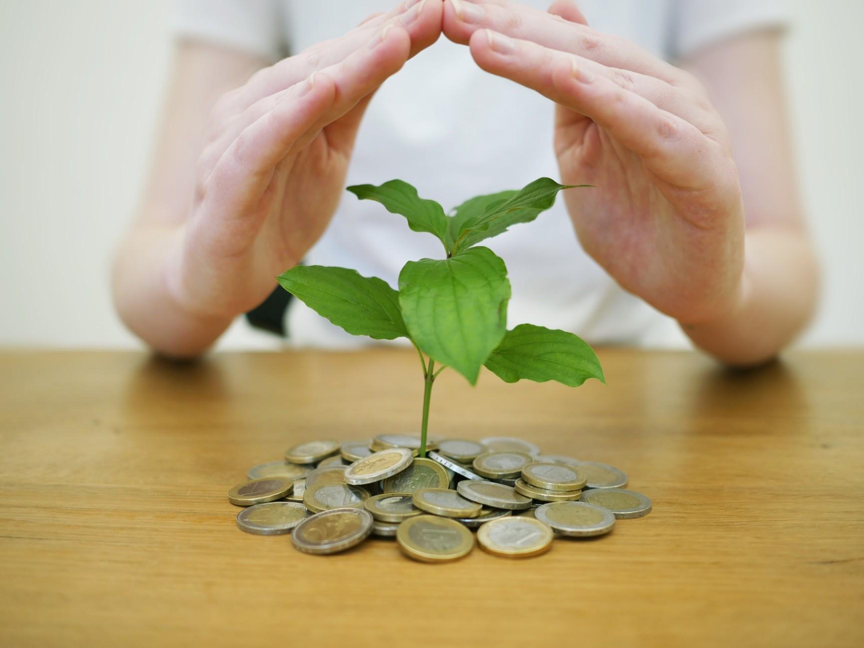 15 Choses à Savoir Avant D'investir Dans les Actions - Apprenez-le Ici